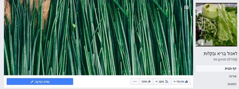 דף פייסבוק עסקי (11)