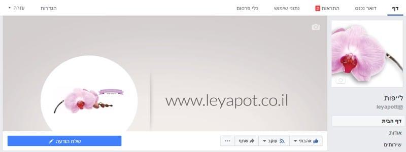 דף פייסבוק עסקי (4)